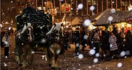 Jarmark świąteczny w Skierniewicach 2016